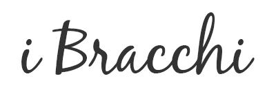 I Bracchi